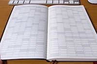 MARK'S DIARY 2011 Daily Planner