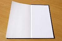 旅人手帳 2011 - BE-PAL 2010年12月号の写真