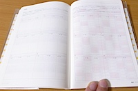 夢をかなえる人の手帳 2011 (藤沢 優月)の写真