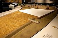 登呂博物館の写真