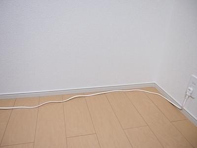 木目プロテクター0号ライトの写真