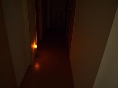 ELPA(エルパ) PM-L160(AM) LED明暗センサー付きナイトライトの写真